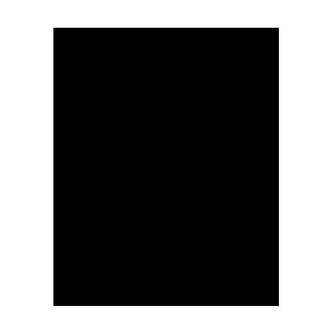 logo-vf240